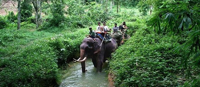 Khao Lak Safari